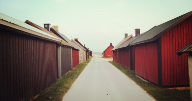 Dopyt na dodávku domov typu Tiny House