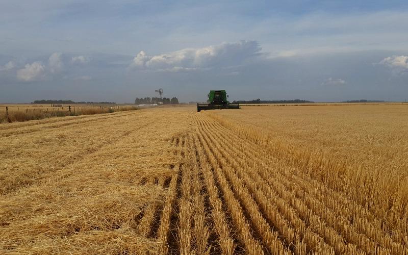 Poľsko: Dni alergie a potravinovej intolerancie