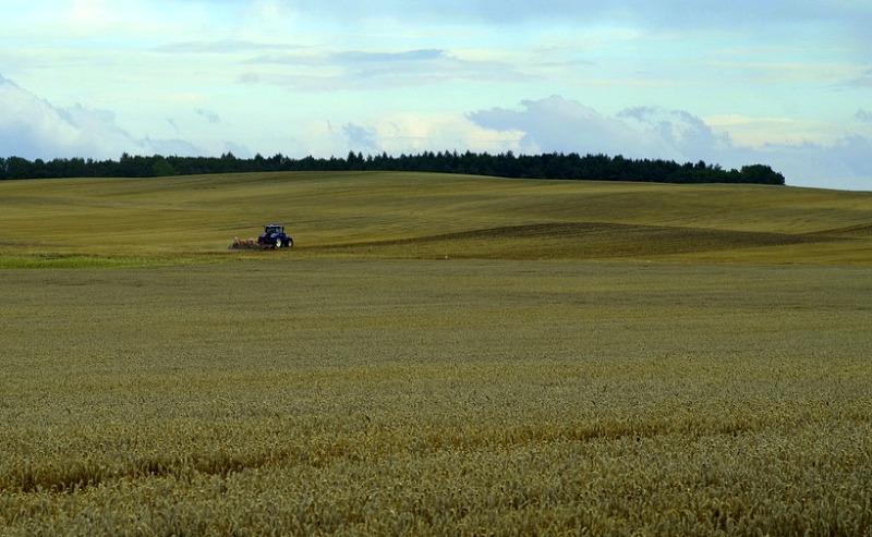 Kazachstan plánuje postaviť 79 nových závodov na spracovanie poľnohospodárskych produktov